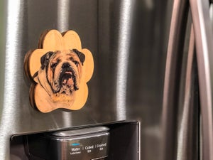 Image of Bulldog Magnet