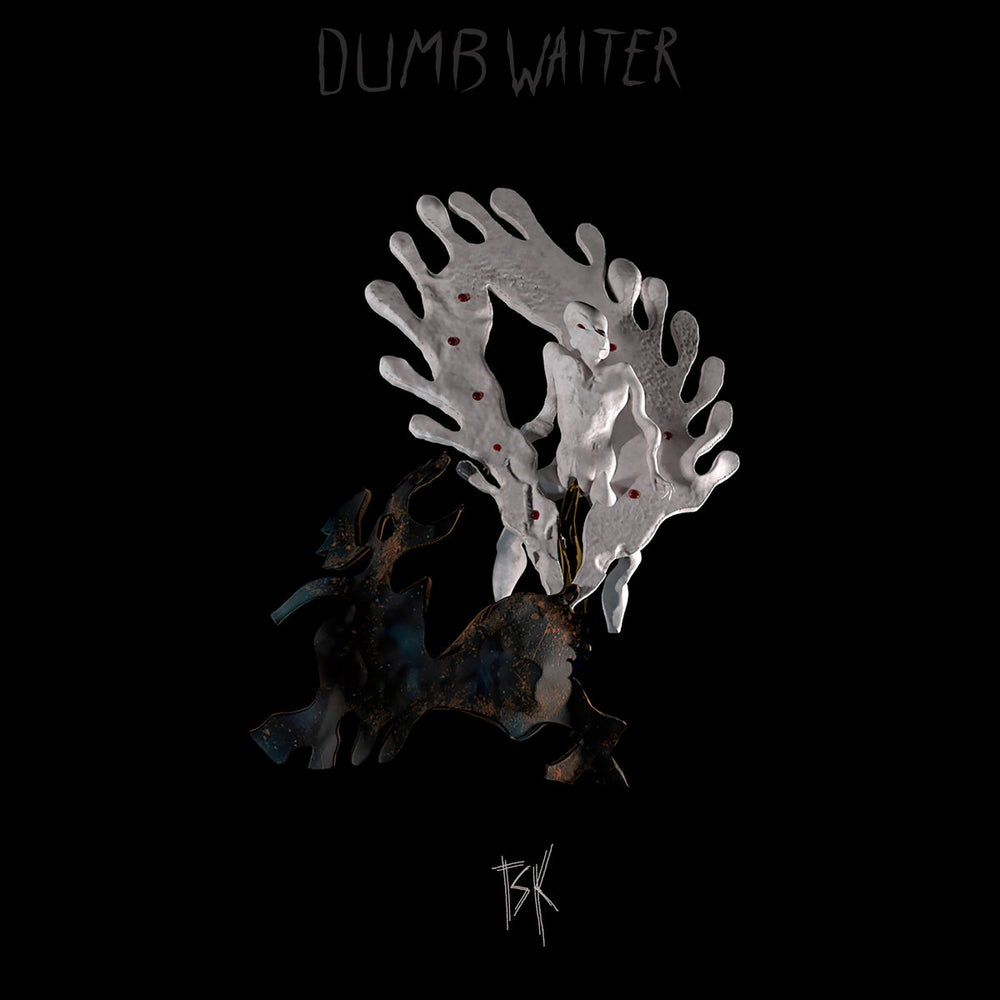 Image of Dumb Waiter - TSK Vinyl LP