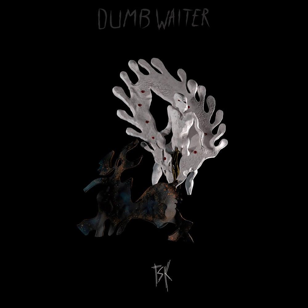Image of Dumb Waiter - TSK Vinyl LP