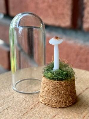Image of Miniature Mushroom Dome - single mini A