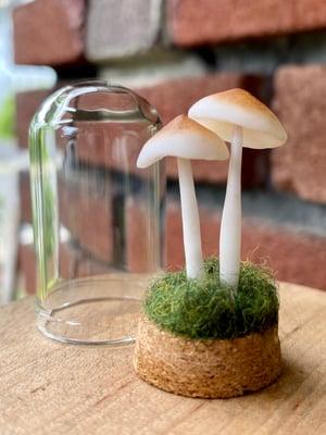 Image of Miniature Mushroom Dome - medium A