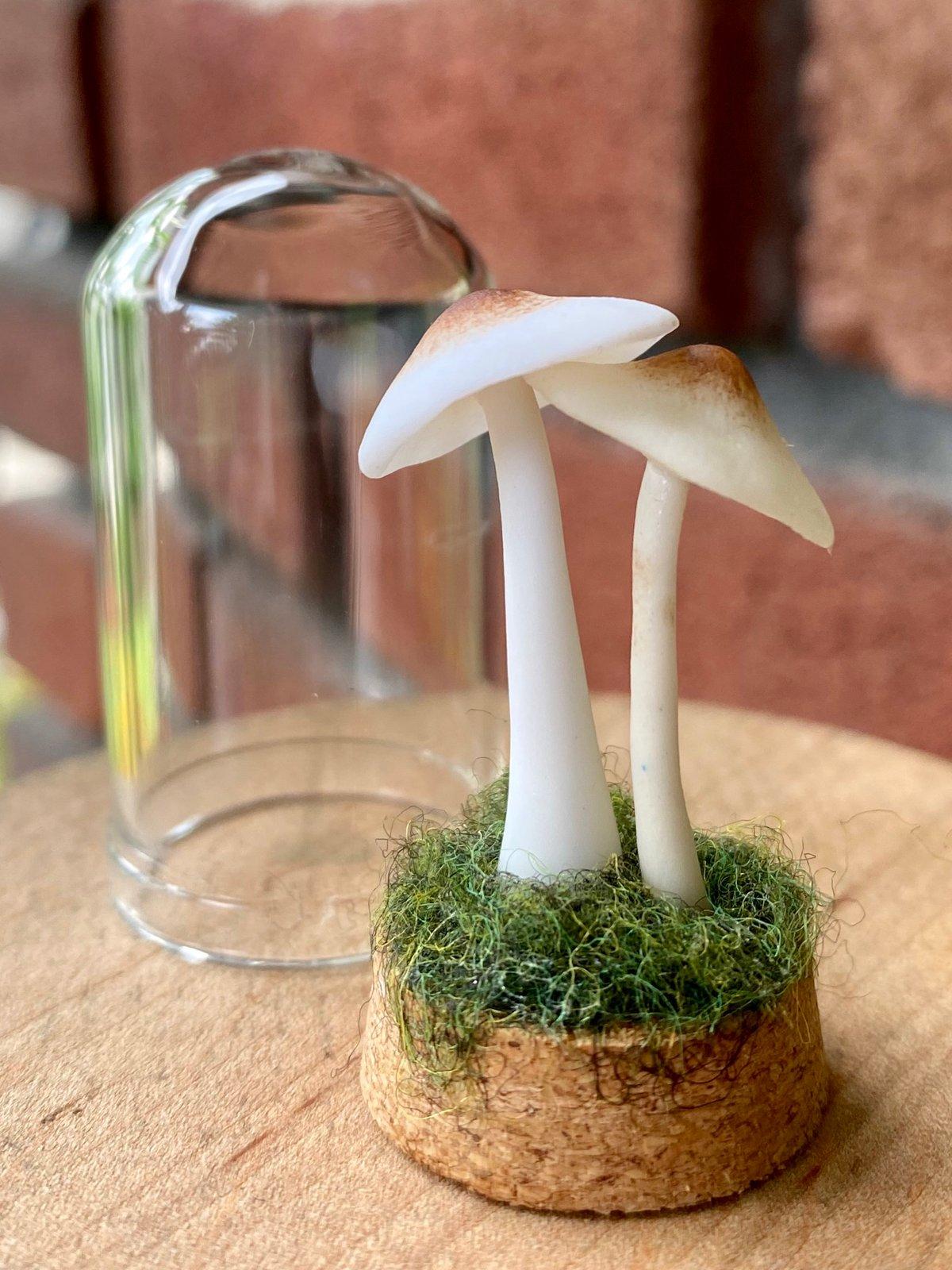 Image of Miniature Mushroom Dome - medium B