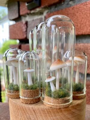 Image of Miniature Mushroom Dome - large A