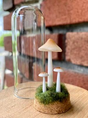 Image of Miniature Mushroom Dome - large C