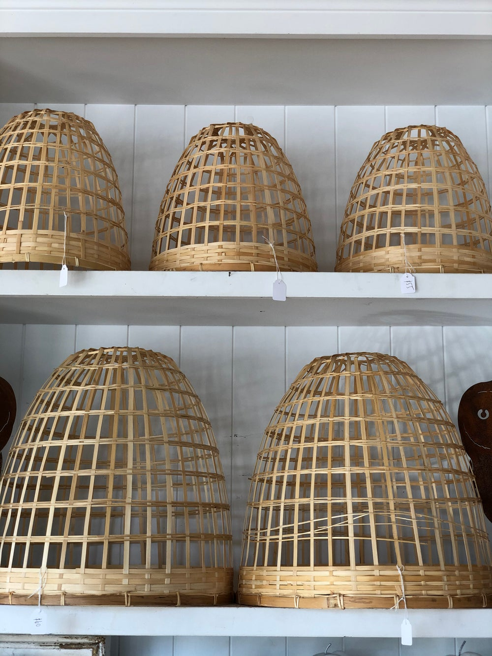 Image of Bamboo Cloche