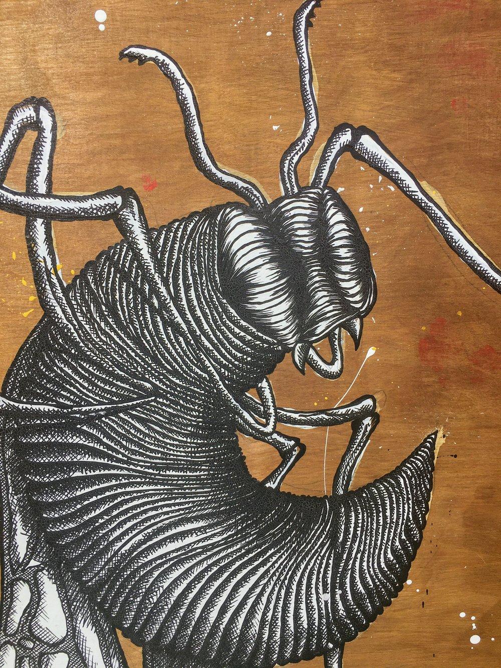 'Wasp'