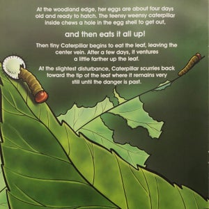 The Ugly Caterpillar, A True Story (A book by Loretta Lutman)