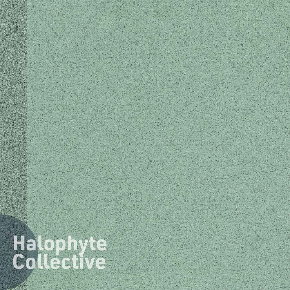 Halophyte: Issue 0