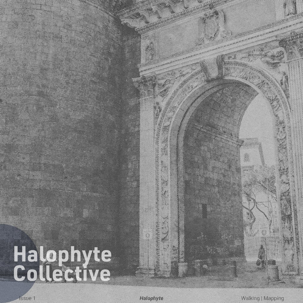 Halophyte: Issue 1