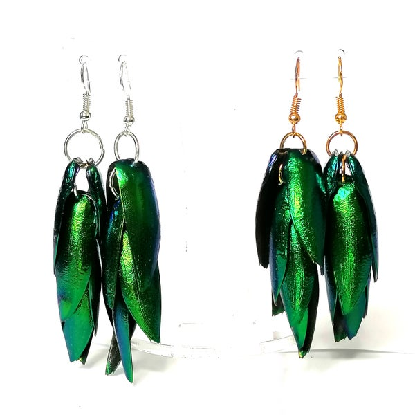 Image of Jewel Beetle Wing Statement Earrings