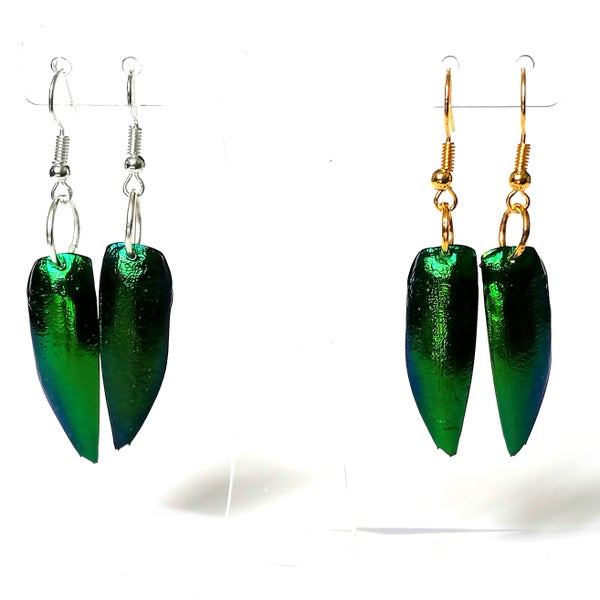Image of Jewel Beetle Wing Solo Earrings