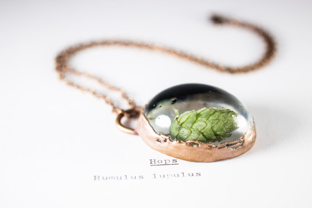 Image of Hops (Humulus lupulus) - Copper Plated Necklace #1