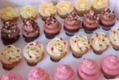 Image of Mixed selection of canapé cupcakes