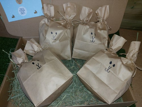 Image of Bunny enichment and forage bags (Small and large available)