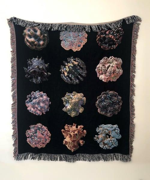 Image of Woven Blanket #17