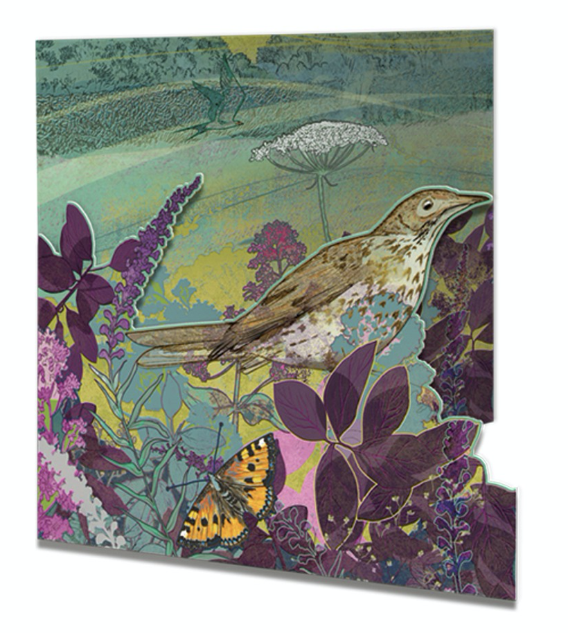 Image of  Thrush - Die-cut Greetings Card