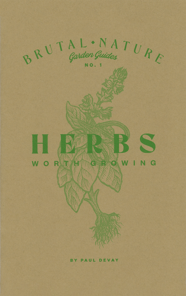 Image of Herbs Worth Growing