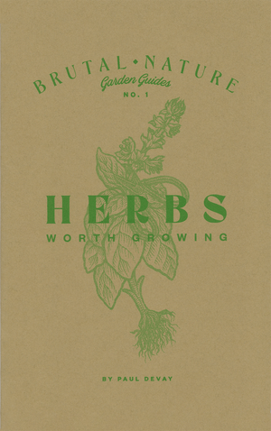 Herbs Worth Growing