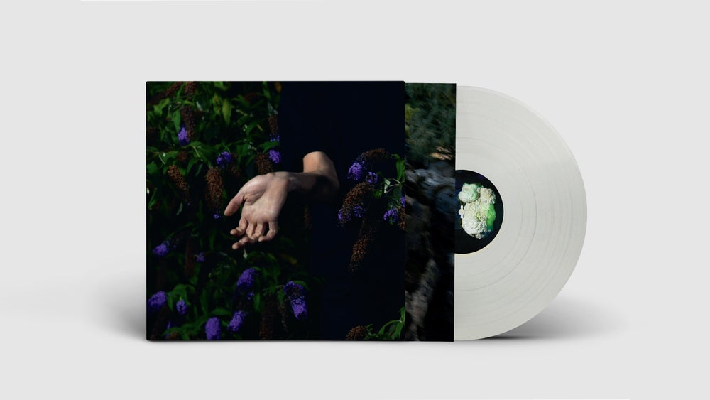 Image of NORDMANN – IN VELVET (LIMITED LP)