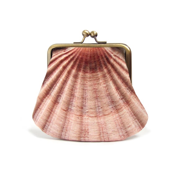 Image of Seashell, large coin & card purse, velvet shell