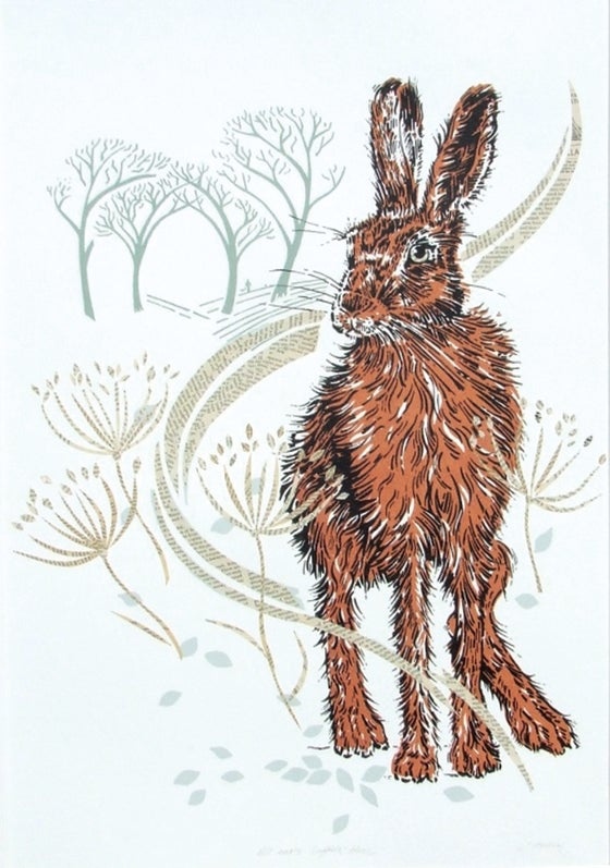 Image of All ears - Suffolk hare