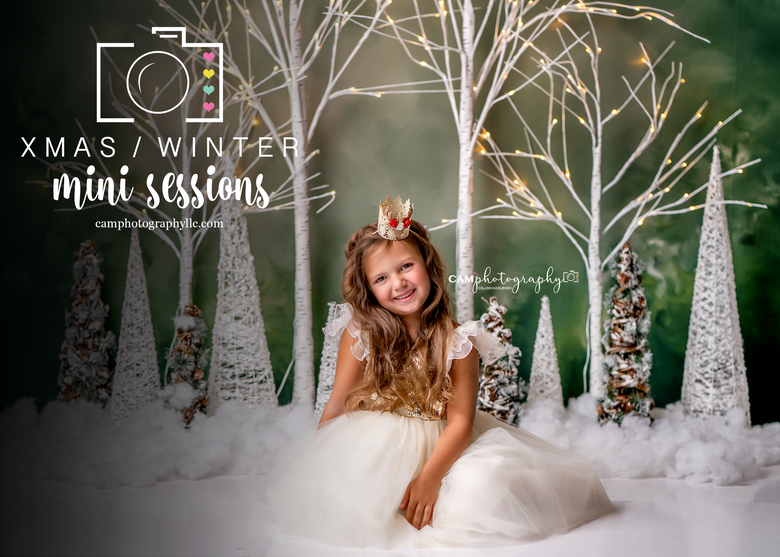 Image of **Click Here & Read** - IIII - Holiday/Winter Minis 2020 - Retainer Only