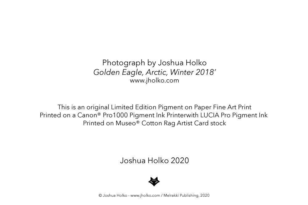 Image of Arctic Fine Art Greeting Cards