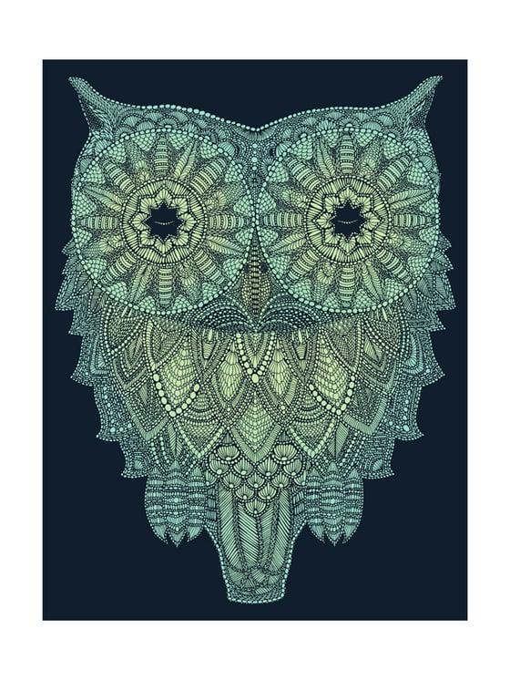 Image of Night-time owl  40x30cm