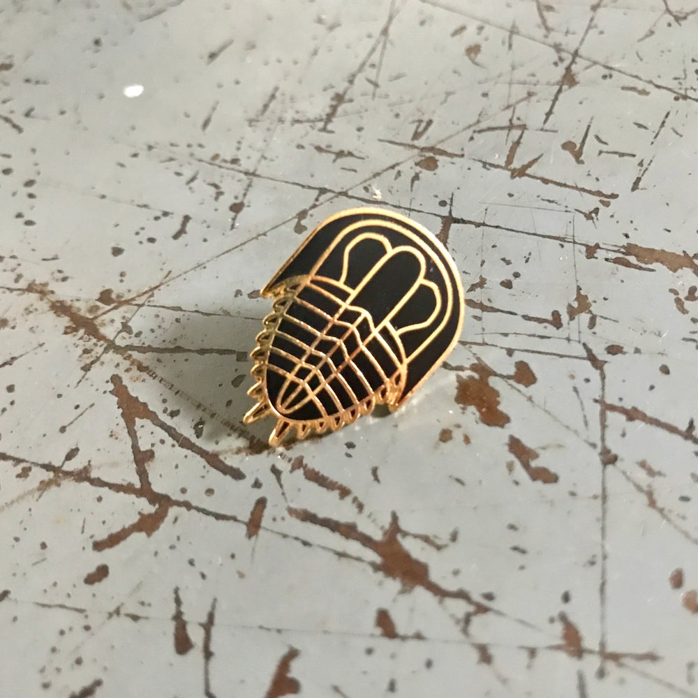Trilobite Pin - Black and Gold