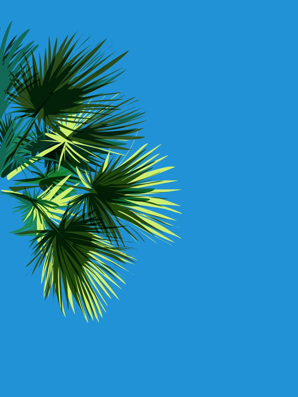 Palm Giclee print
