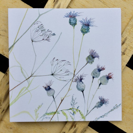 Image of Cow Parsley and Knapweed Card