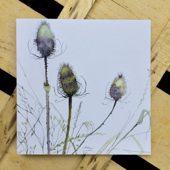 Image of Teasels and Ragwort Card