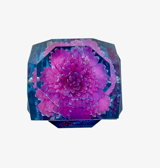 Image of Petite Painted Underwater Flower Box