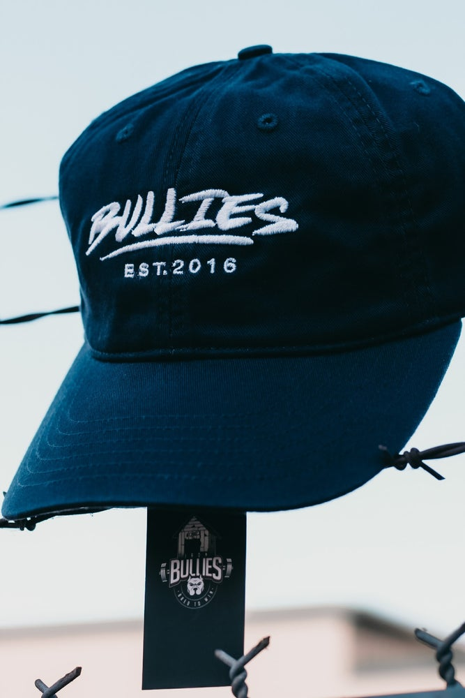 Image of Bullies Dad Hats