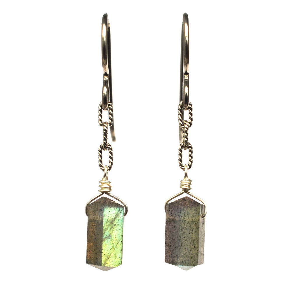Image of Labradorite Spike Earrings