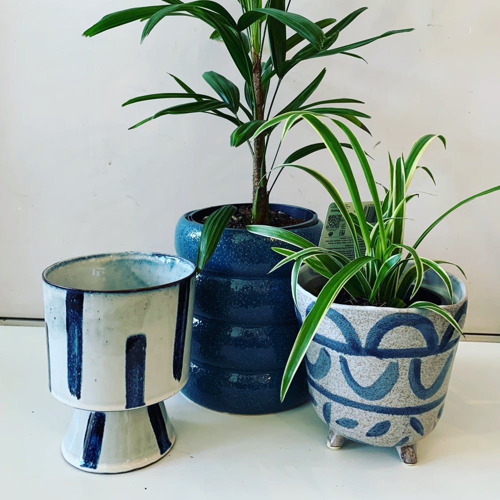 Image of Plant and pot combos