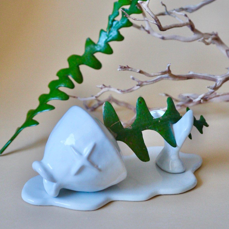 Image of Chum Ming fishbone cactus planter