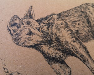 Maned Wolf on recycled brown