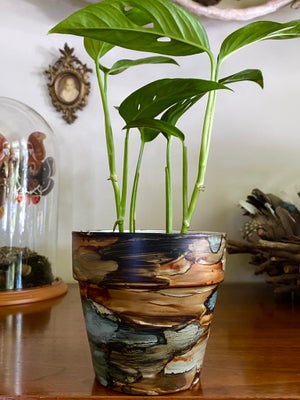 Image of Moody Blues Cachepot - A