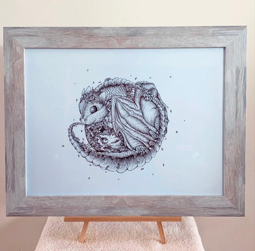 Image of Baby Earth Dragon