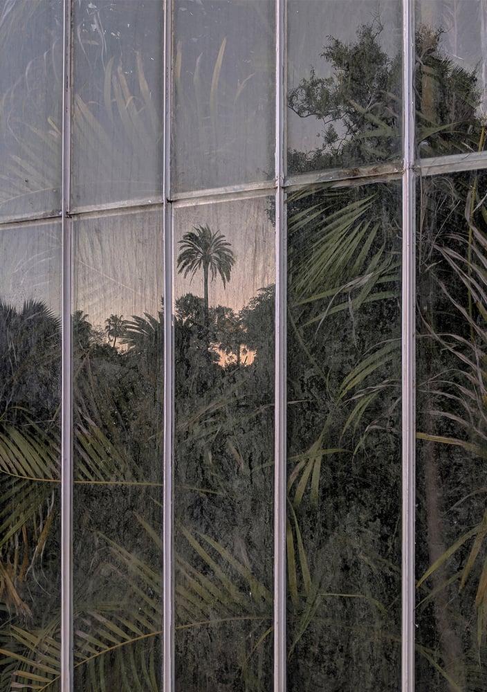 Image of Botanical Gardens de Anna Kuznyetsova