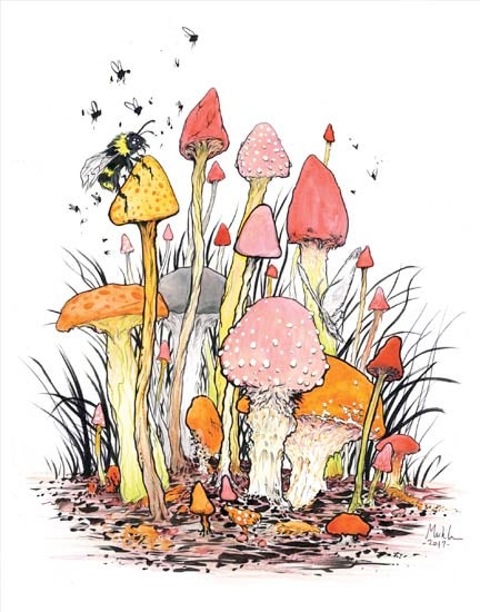 Image of mushrooms 11x14 in print W/FREE SHIPPING