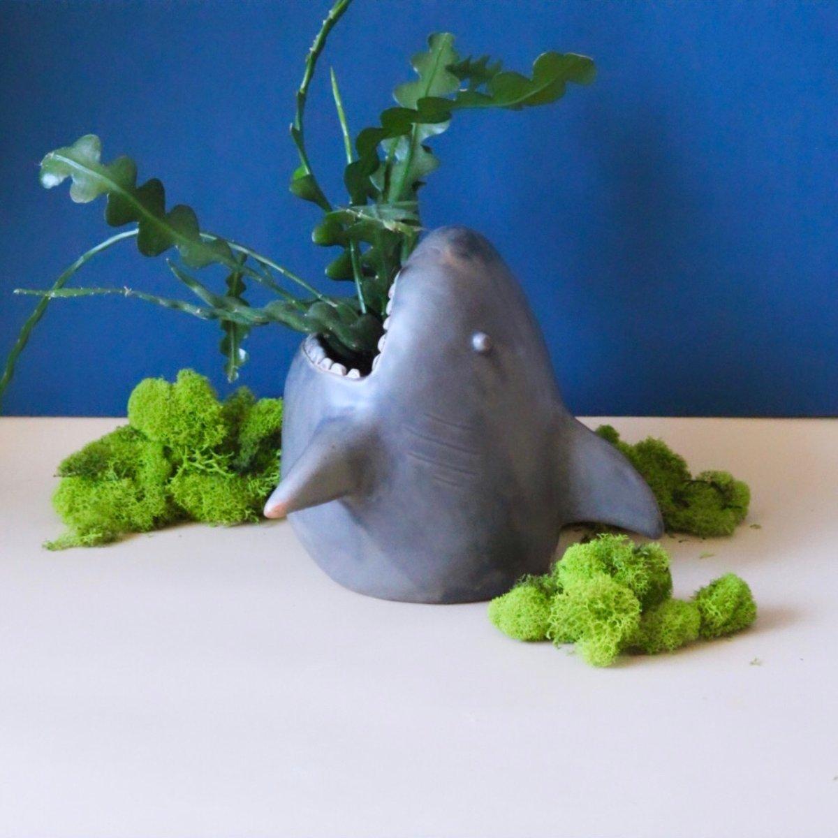 Image of Greenland shark planter