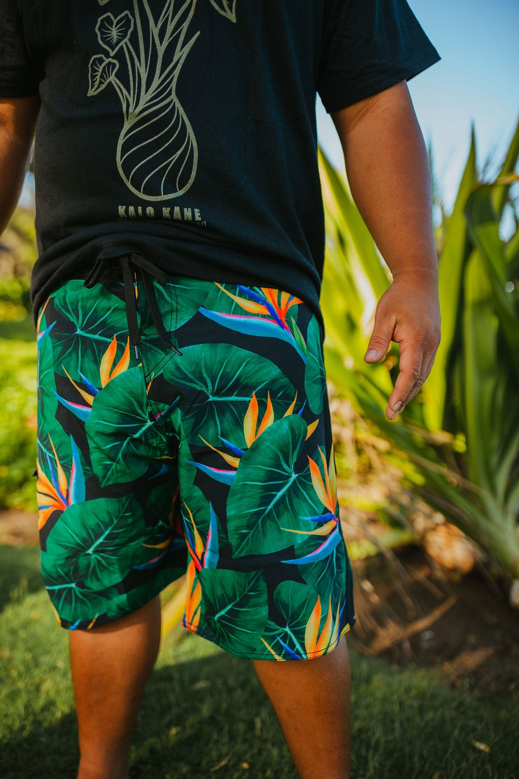Image of Keola Surf Shorts ~ WAIPI`O OASIS