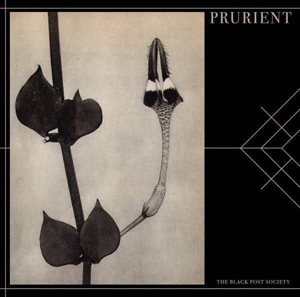 Image of Prurient - The Black Post Society CD