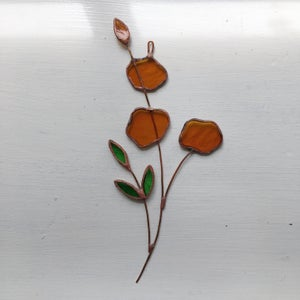Image of Amber Posie no.2
