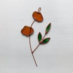 Image of Amber Posie no.3
