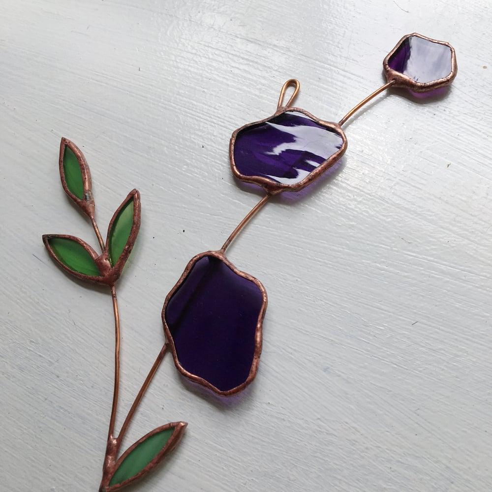 Image of Purple Posie no.1