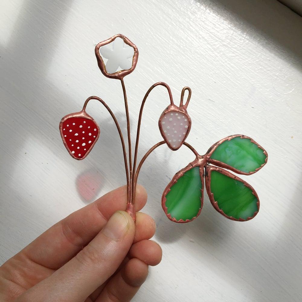 Image of Strawberry Posie no.1
