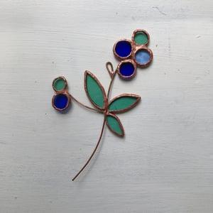 Image of Blueberry Posie no.2